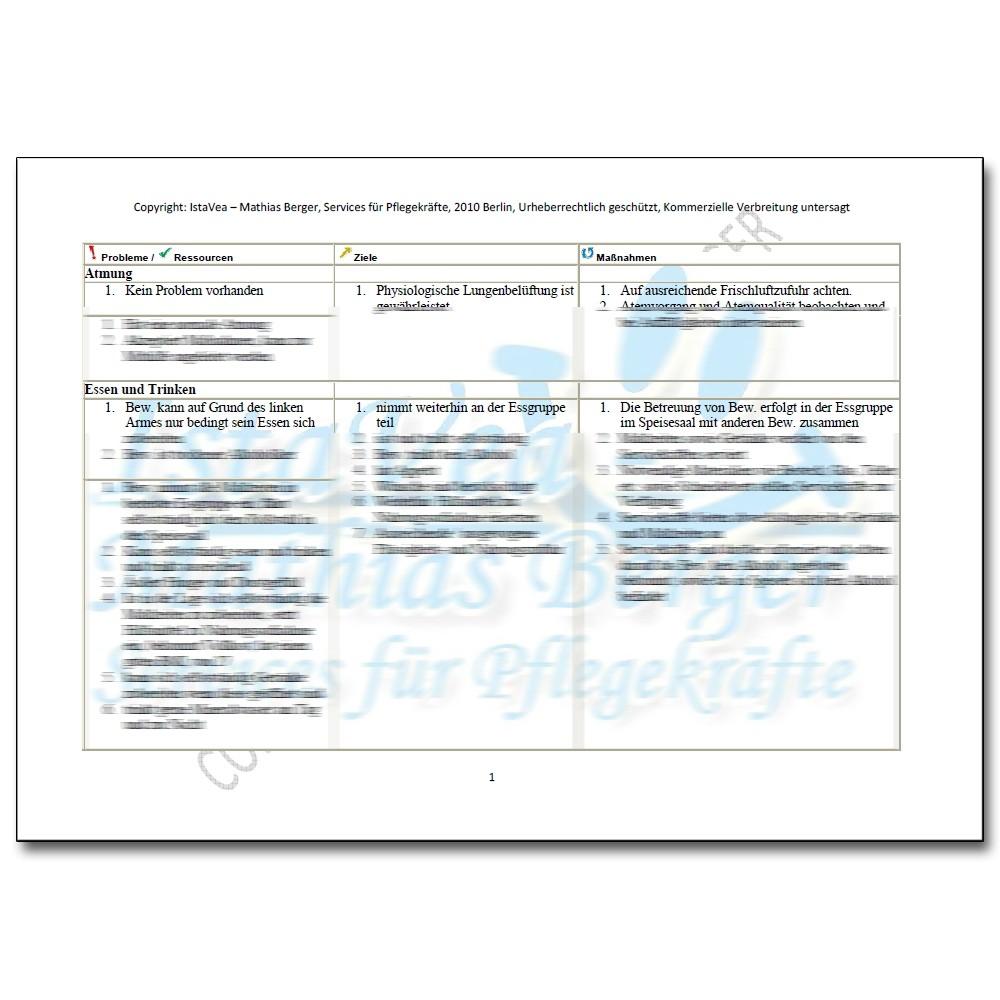 Download Pflegeplanung Esbl Z N Apoplex Mit Hemiparese Ex Alkoholiker