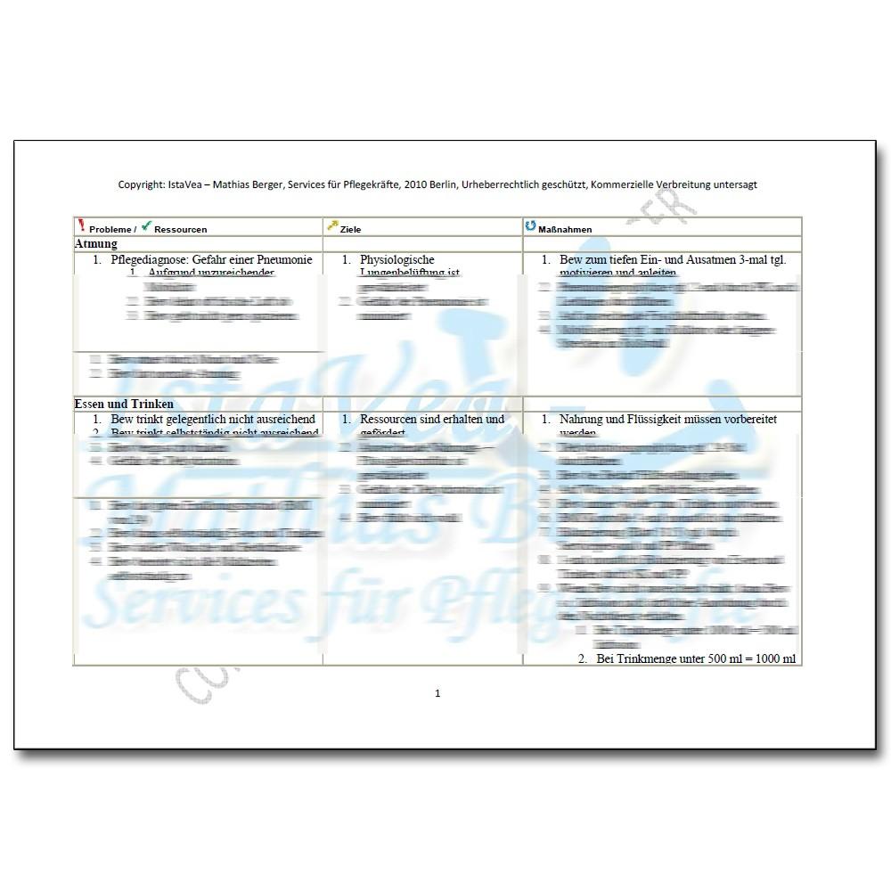 download pflegeplanung demenz inkontinenz thrombosegefahr - Pflegeplanung Schreiben Muster