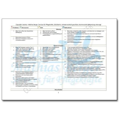 Download Pflegeplanung Demenz, Diabetes mellitus, Luftnot, Sturz