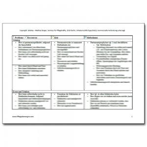 Pflegeplanung Demenz, Sehschwäche, Inkontinenz