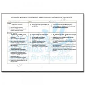 Download Pflegeplanung ESBL, z.n. Apoplex mit Hemiparese, ex Alk